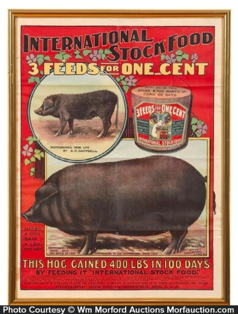 International Stock Food Poster
