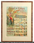 Allen & Ginter Tobacco Birds Of The Tropics Sign