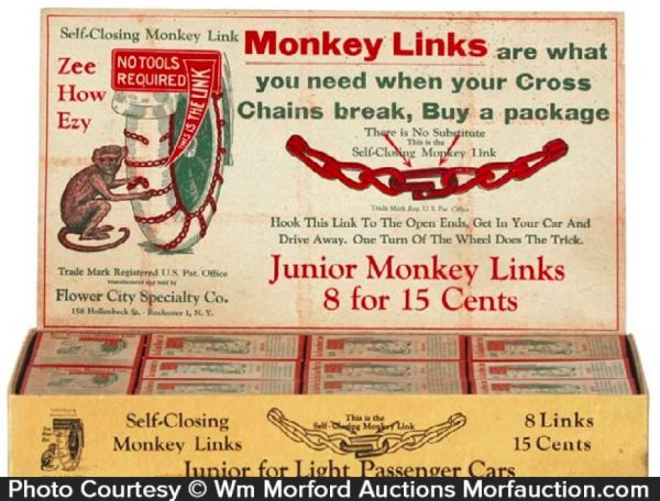 Money Links Chains Display Box