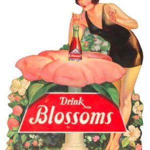 Blossom Soda Sign