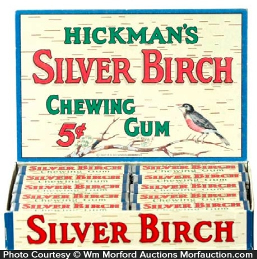Silver Birch Gum Display
