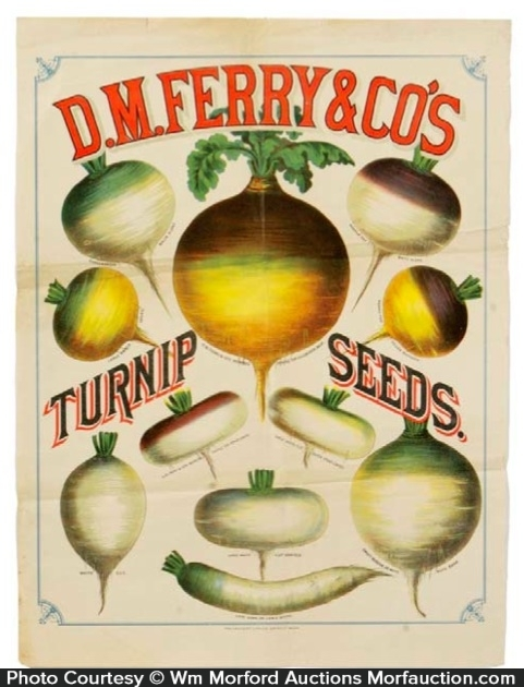 Ferry Turnip Seeds Sign