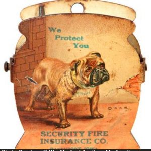 Security Fire Insurance Clip