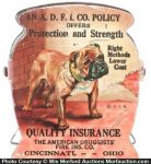 Bull Dog Insurance Clip