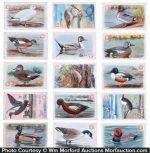 Vintage Bird Cards