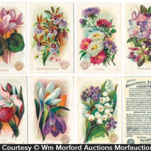 Arm & Hammer Flower Card Set