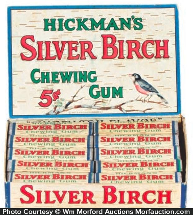 Silver Birch Gum Box