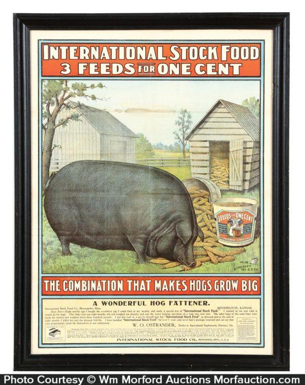 International Stock Food Hog Poster