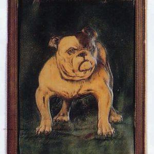 Bull Dog Cigars Sign