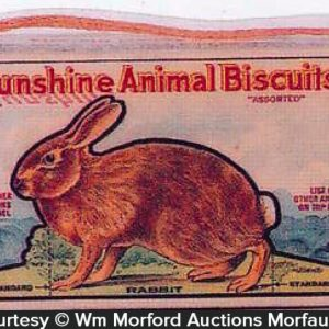 Sunshine Animal Biscuits Box