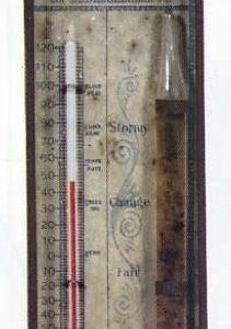Gall Cure Collars Thermometer