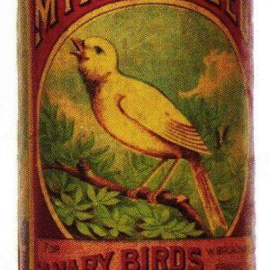 Leggett Canary Bird Seed Box