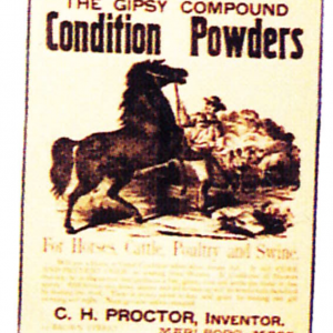 Gypsy Condition Powders Poster