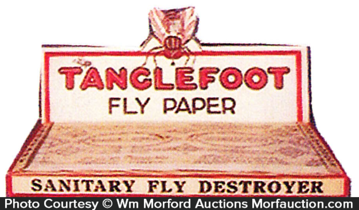 Tanglefoot Fly Paper Display