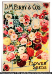 Ferry Flower Seed Poster