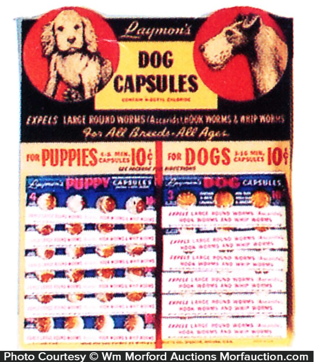 Raymon's Dog Capsules Display