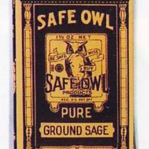 Safe Owl Spice Tin