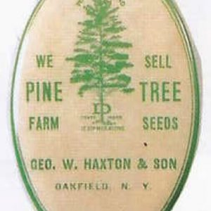 Haxton Pine Tree Knife Stone