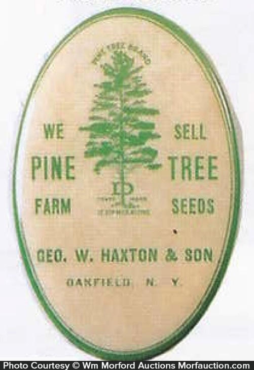 Haxton Pine Tree Knife Stone