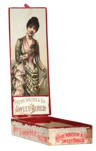 Sweet Birch Chewing Gum Box