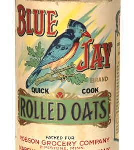 Blue Jay Oat Box