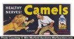 Camel Cigarettes Lion Tamer Sign