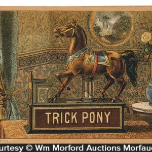 Trick Pony Bank Trade Card