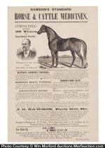Rawson's Veterinary Medicine Poster