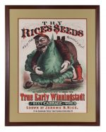 Rice's Seed Cabbage Sign